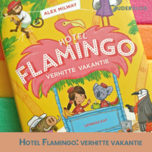 Pin it: Hotel Flamingo 2